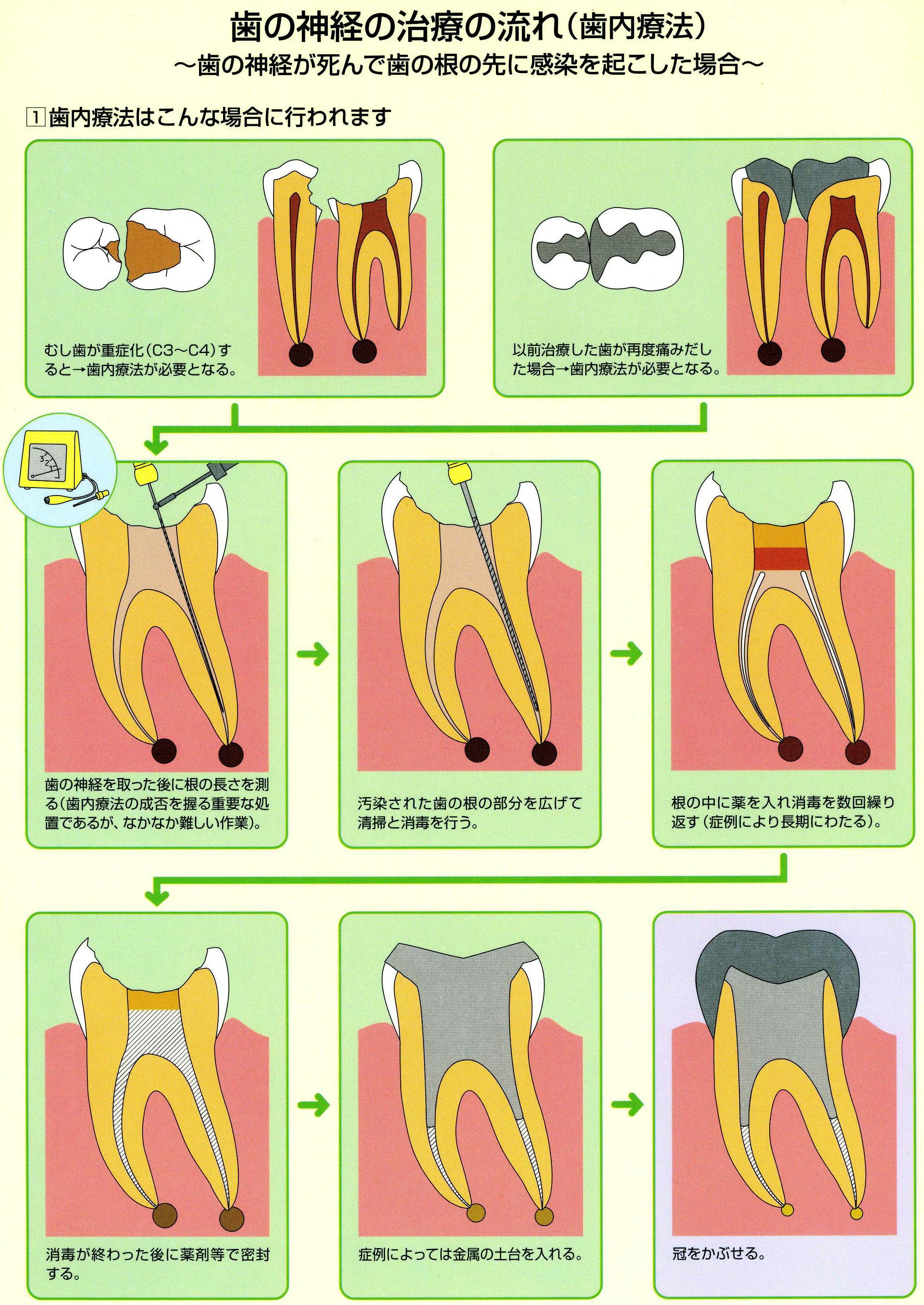 診療案内|Yamazaki Dental Clinic